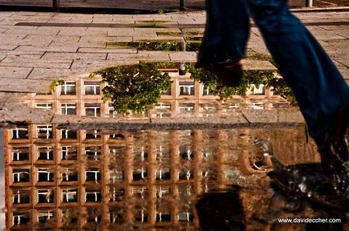 Alexanderplatz puddle