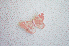 Fly Butterfly (JoyHey) Tags: art texture floral canon butterfly eos fly wings soft pattern pastel fineart photograph dreamy allrightsreserved whitemagic kristapalmu joyhey wwwjoyheycom