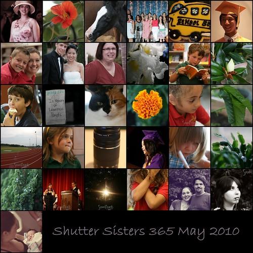 Shutter Sisters 365 May 2010 Mosaic-1