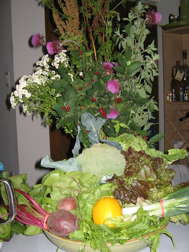 Week 4 Lancaster Farm Fresh CSA