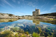 Portencross Castle (gms) Tags: blue seaweed reflection castle pool scotland sunny bubbles ayrshire portencross noseagull