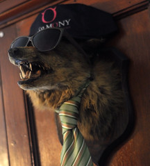 Hipster Fox (Snowtown) Tags: london sunglasses awesome hipster taxidermy fox