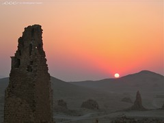 Syria / شروق الشمس في تدمر