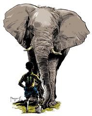 OS ELEFANTES DA COSTA DO MARFIM (Fragadesenhos) Tags: brazil costa cup sport brasil time fifa soccer dumbo futebol elefante marfim paquiderme