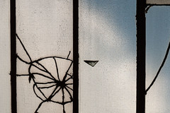 glass web (Birgit Speulman) Tags: roof london broken glass wheel rad exposition brewery bricklane glas dak scherven wiel spinneweb breuklijnen