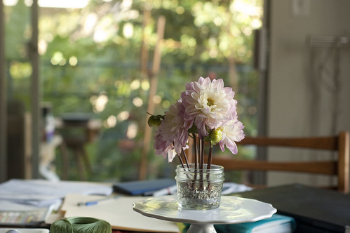 dahlias, jam jar, table
