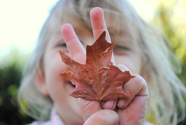 a bunny-eared leaf.