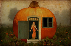 Peter the Pumpkin Eater's wife