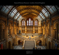 Natural History Museum - London, United Kingdom (HDR) (farbspiel) Tags: england london history museum photoshop logo geotagged photography video unitedkingdom wideangle historic charlesdarwin blended naturalhistorymuseum makingof dri hdr highdynamicrange watermark hdri blend gbr postprocessing dynamicrangeincrease photomatix digitalblending wasserzeichen tonemapped tonemapping p6000 watermarking detailenhancer nikonp6000 topazadjust topazdenoise klausherrmann topazsoftware topazphotoshopbundle photomatixpro40 geo:lat=5149614681 geo:lon=017641962 semiautomaticdeghosting