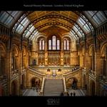 Natural History Museum - London, United Kingdom (HDR)