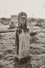 07022017_cemetery_41-2 (yosmama151) Tags: ppfineartfilmtruffle cemetery coast galveston galvestonisland gravemarker graveyard gulfcoast gulfofmexico headstone oleandercemetery texas tomb tombstones vacation blackandwhite bw monochrome