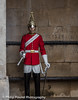 On Guard (Philip Pound Photography) Tags: changingtheguard householdcavalry britisharmy britishsoldiers queenshouseholdcavalry horseguardsparade london soldiers uniform pomp ceremony pageantry