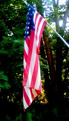 Happy Fourth of July!! (Maenette1) Tags: fourthofjuly flag trees sunshine backyard menominee uppermichigan flickr365