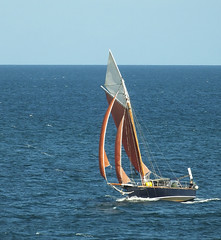 Sailing In (Cornishcarolin. Stupid busy!! xx) Tags: cornwall falmouth falmouthbay thefalestuary yachts boats water sea