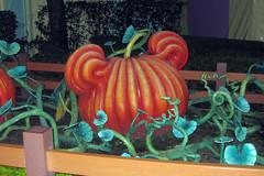Micky Pumpkin