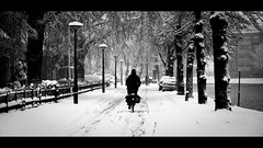 Snow Biker (Visual Flows) Tags: winter bw matthijs white snow black streets netherlands canon snowy widescreen cinematography visual cinematic 169 leeuwarden dijkstra flows ef50mm 400d