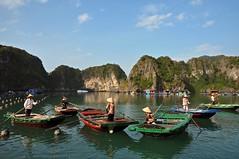 Good Morning (AngelK32) Tags: morning mountains fishing rocks southeastasia december cove vietnam hanoi karst halongbay villagers rowboats reddragon floatingvillage junkcruise nikond90 1685mmvr