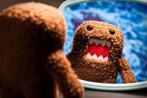 Domo-kun Reflects