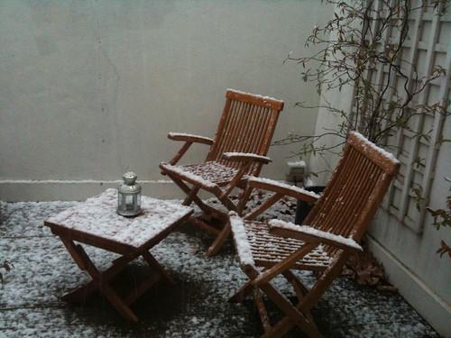 January snow 2010 3