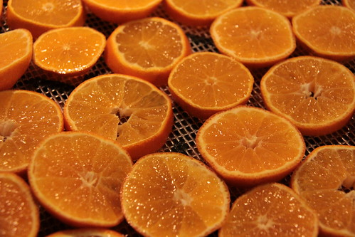 Dehydrated Orange Slices Preserving Recipes Orange January