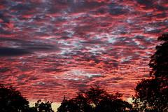 Intense Sky, Malilangwe