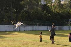 (FreshCC) Tags: kite singapore marinabarrage