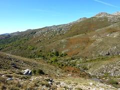 Descente vers le ruisseau de San Petru : le long de l'affluent suivi pour la descente