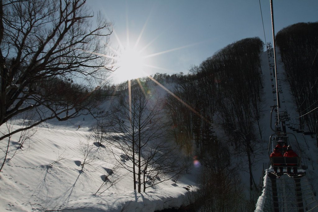 2010_01_30_3001