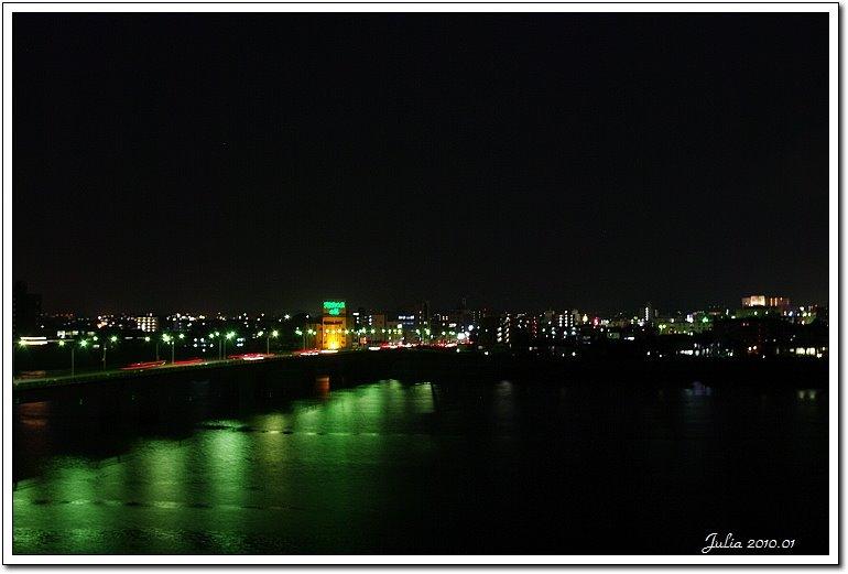 宮崎飯店 (11)
