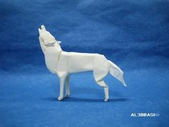 Snow Wolf (Al3bbasi.) Tags: animal origami wolf lionelalbertino al3bbasi