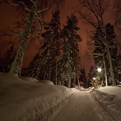 A stroll among giants (Barry_Madden) Tags: road longexposure trees winter light snow tree nature night forest canon suomi finland landscape evening countryside frozen helsinki path scenic freezing nightphoto talvi 2010 canonefs1022mmf3545usm 50d magicunicornverybest selectbestexcellence magicunicornmasterpiece sbfmasterpiece