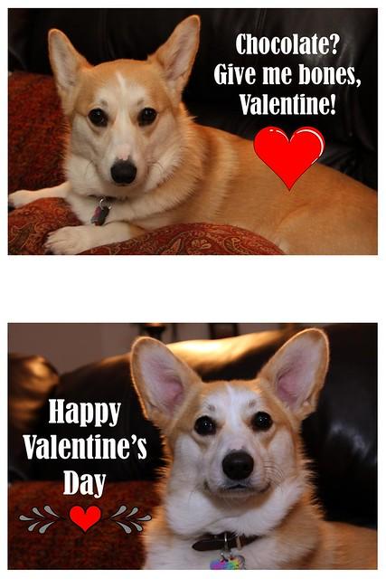 Valentine B