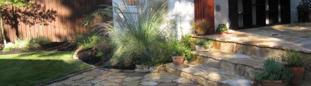 backyard professional landscaping