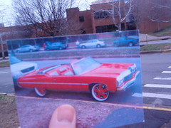photography project (3)