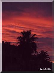 Siluetas en el atardecer... (akel_lke ) Tags: sunset espaa rouge atardecer spain rojo europa raquel murcia palmera elke siluetas mediterrneo rakel natureselegantshots thebestofmimamorsgroups rakelelke