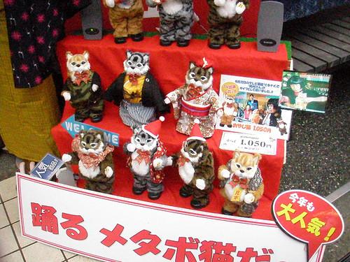 cat_dolls