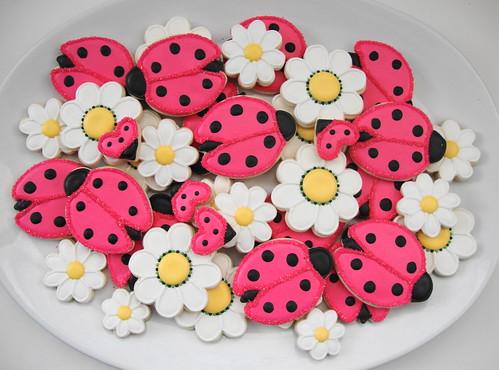 Nayra's Ladybug Platter