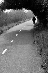 Alone (J-Fish) Tags: bw nature alone path walk campbellpark aeoe 1685mmf3556gvr losgatoscreekwalk