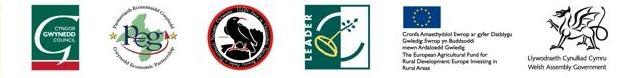 logos RDP Gwynedd strip footer - original-1