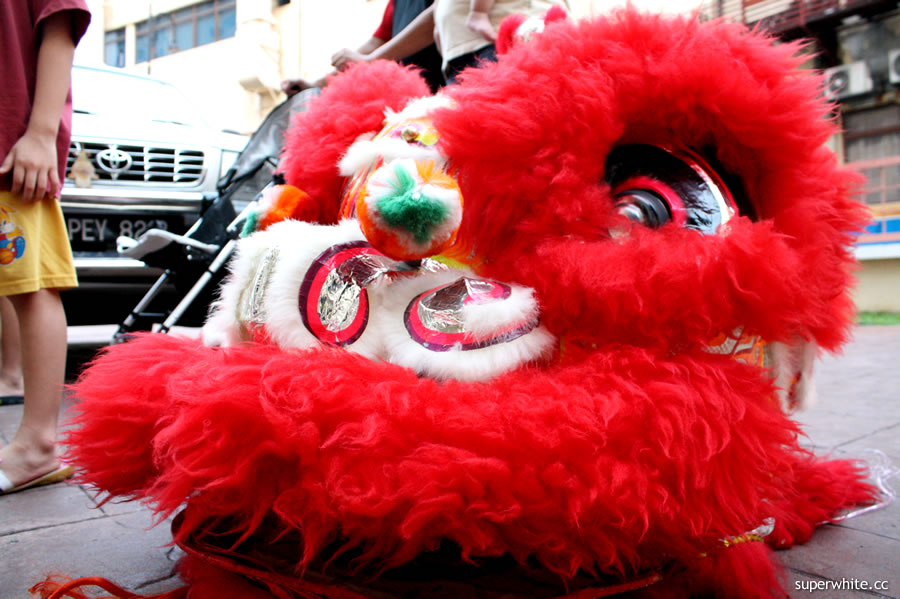 Lion Dance Day