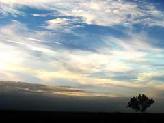 [フリー画像] [自然風景] [空の風景] [雲の風景] [樹木の風景]       [フリー素材]