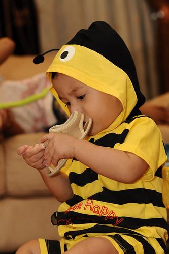 Amirul Bee 8