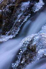 Rivière du Mont de Sainte-Étienne (tjerkb) Tags: canada water canon river agua eau québec icicles hielo ijs frozenriver ijspegels tjerk bartlema tjerkbartlema tbphotography photographietb