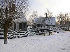 stukje besneeeuwde schans, laat in de middag (Dita.v.s) Tags: zaanstreek januari2010