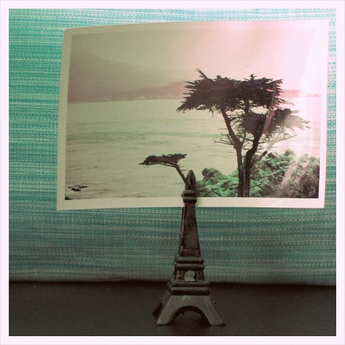 eiffel tower and lone cypress