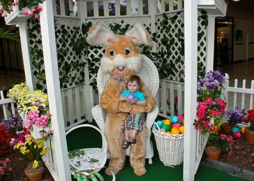 easter bunny 20102