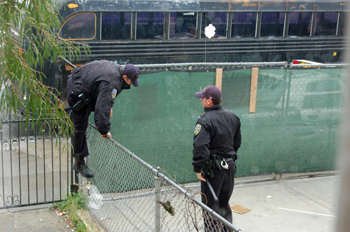 4cop-top-of-fence.jpg