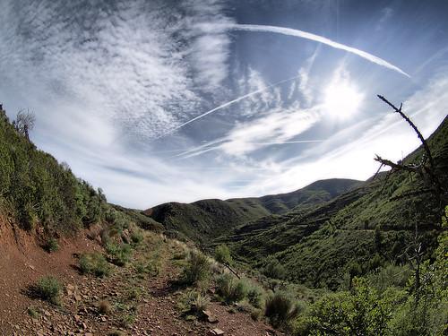 _1011072P by Calderona.Trails.