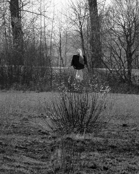 Modern scarecrow