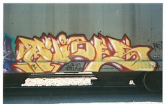 PUBES (BGIZL) Tags: graffiti trains pubes nct hoppers